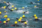 Padstow to Rock Swim 2016