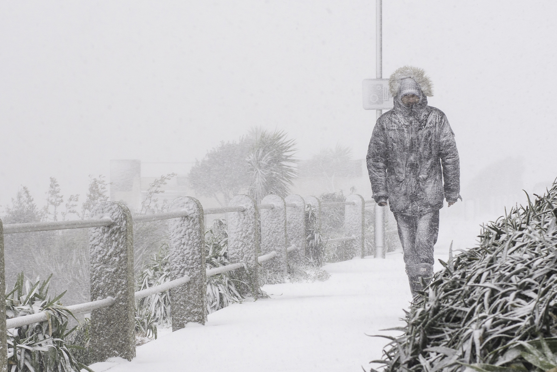 Walking on the seafront at Falmouth in the snow. 28 February 2018
