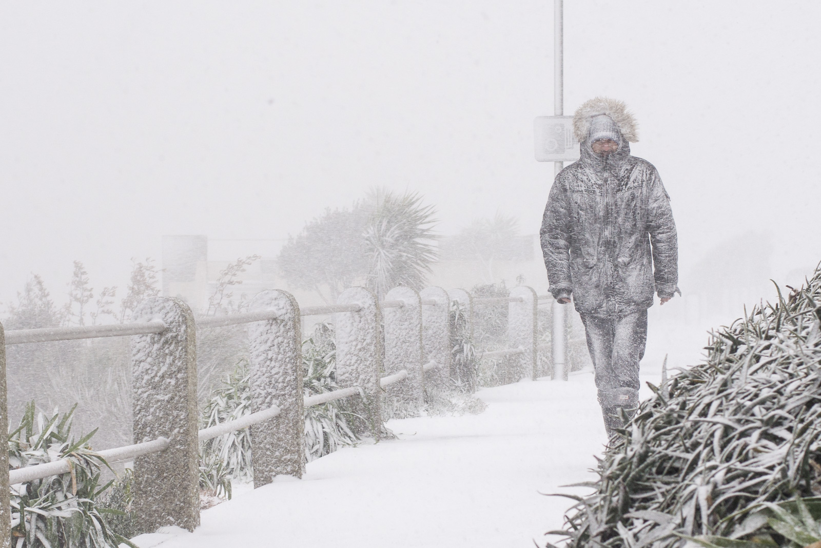 Snowy Days - Cornwall documentary photography in Falmouth
