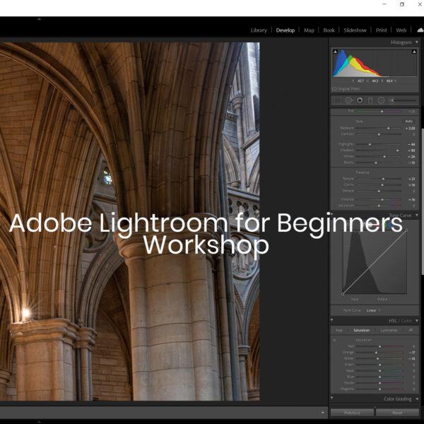Lightroom for Beginners online workshop
